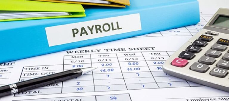How Can You Get Important Benefits of Using Online Payroll Software For Your Small Business